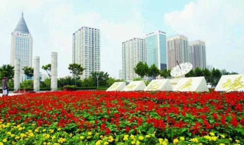 林红玉到济宁高新区、邹城市调研重点项目建设