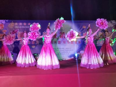 高新区举办2020年新时代文明实践文化惠民进社区