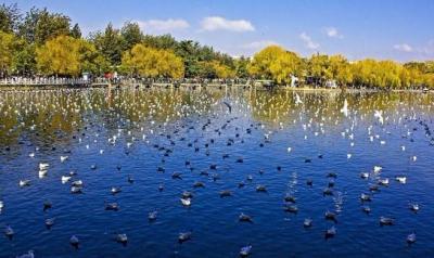 國慶中秋假期能來云南旅游嗎?答案是……