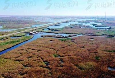 """政能量 积极践行国家战略!看黄河流域生态保护和高质量发展""""山东实践"""""""