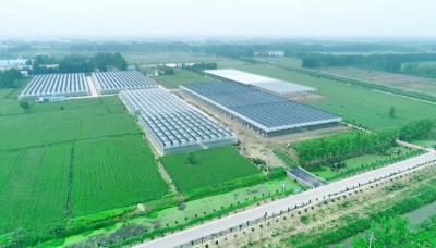 山东认定首批22个省级现代农业产业园 济宁1家