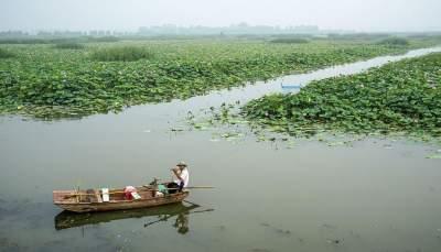 我國國際重要濕地達64處,濟寧1處