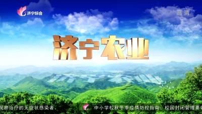 濟寧農業-20200915