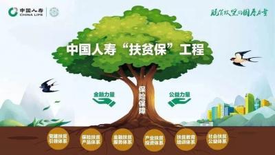 """中国人寿位列""""保险业企业家社会责任指数(2020)""""榜首"""