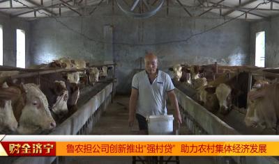 """魯農擔公司與農行創新推出""""強村貸"""" 助力農村集體經濟發展"""
