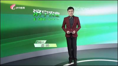 济宁农业-20200925