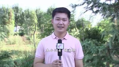 一分鐘帶您領略濟寧經開區陳家村的新風貌