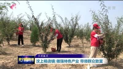 乡村振兴|种花椒养芦花鸡 特色产业拓宽致富路
