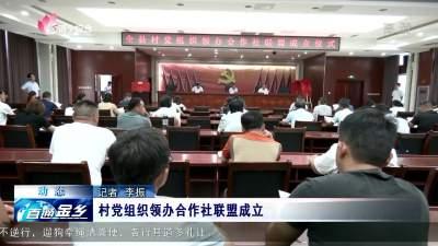 金鄉村黨組織領辦合作社聯盟成立