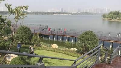 太白湖新区市民公园南部栈道及观景平台项目完工