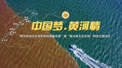 中国梦·黄河情丨候鸟云集、稻田成画!跟随母亲河脚步,一览山东黄河沿岸锦绣风光
