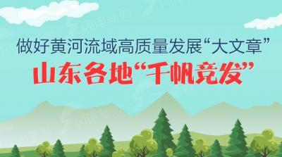 """图解 做好黄河流域高质量发展""""大文章"""",山东各地""""千帆竞发"""""""