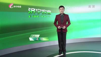 济宁农业-20200929