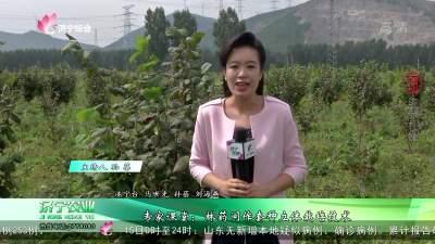 专家课堂:林药间作套种立体栽培技术