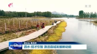 县市区委书记谈人才丨泗水积极招才引智 激活县域发展新动能