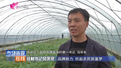 驻村书记风采录 品牌助力 托起农民致富梦