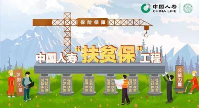 三个关键词见证中国人寿的保险扶贫力量