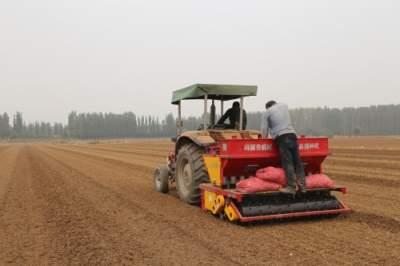 不愁种蒜难了!一天20亩,大蒜播种机效率杠杠滴!
