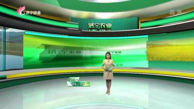 济宁农业-20201002