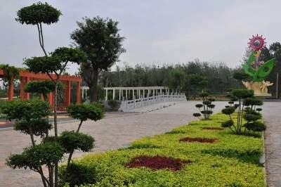 济宁两地上榜全域土地综合整治试点申报乡镇名单