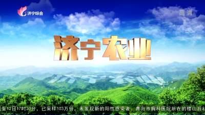 济宁农业-20201013