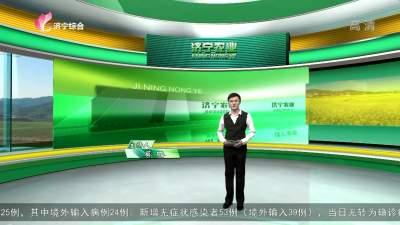 济宁农业-20201030