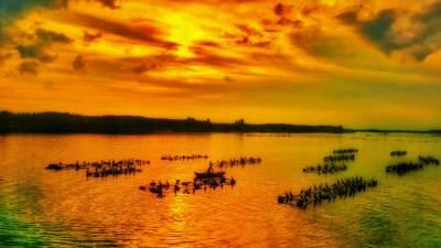 挖掘红色记忆!一曲土琵琶在微山湖畔余音缭绕