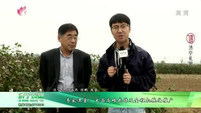 专家课堂:大蒜高畦栽培及全程机械化推广