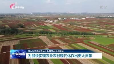 深入學習貫徹黨的十九屆五中全會精神 加快實現農業農村現代化