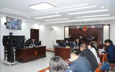 嘉祥法院對龐軍禮等8人惡勢力犯罪集團案作出一審宣判