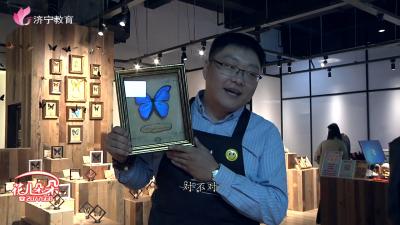 广电口才小学员:体验蝴蝶标本制作,留住精灵永恒之美