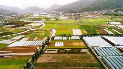 走好中國特色社會主義鄉村振興道路