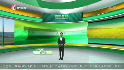 济宁农业-20201117