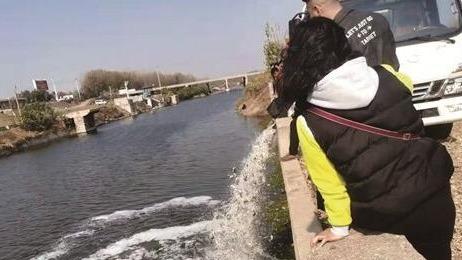 放魚啦!66萬尾魚苗躍入鄒城市這5處公共水域