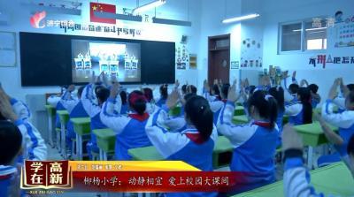 《学在高新》——柳杨小学:动静相宜  爱上校园大课间