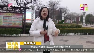 愛尚旅游-20201211