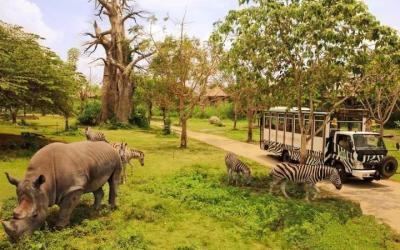 济宁市野生动物园选址初步确定在嘉祥县南部山区