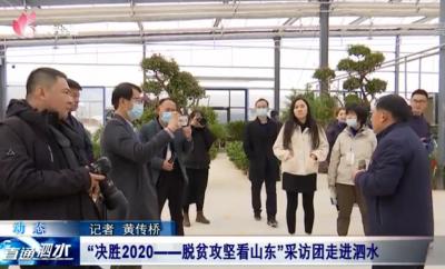 """""""决胜2020——脱贫攻坚看山东""""采访团走进泗水"""
