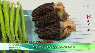 专家课堂:羊肚菌高产优质栽培技术
