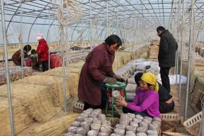 冬闲经济有声有色 梁山4000多名农民工家门口就业