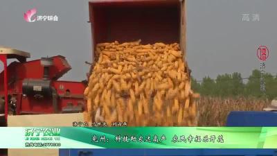 兖州:科技助农达高产 农民幸福乐开花