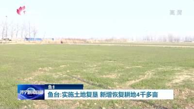 濟寧魚臺實施土地復墾 新增恢復耕地4千多畝