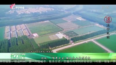 """任城:""""智慧农业""""推动农业转型升级"""