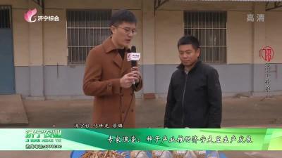 专家课堂:种子产业推动济宁大豆生产发展
