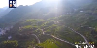 系列时政微视频丨宜居乡村——跟着总书记一起建设美丽中国
