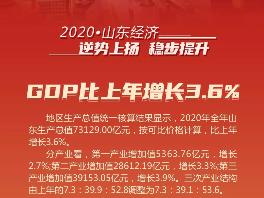 """2020年山东经济""""成绩单""""公布:GDP比上年增长3.6%"""