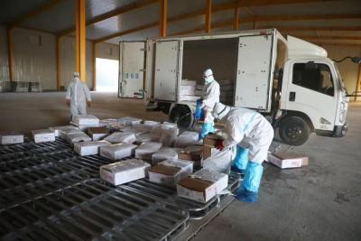 山东省加强进口高风险非冷链集装箱货物防控
