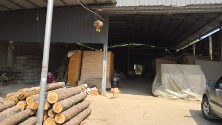 养殖场、木料加工厂扰民被投诉 部门:清理取缔