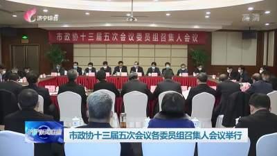 市政协十三届五次会议各委员组召集人会议举行