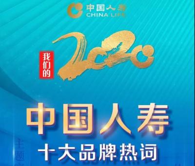 中國人壽2020年度十大品牌熱詞